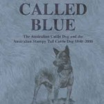 A dog called Blue Noreen Clark