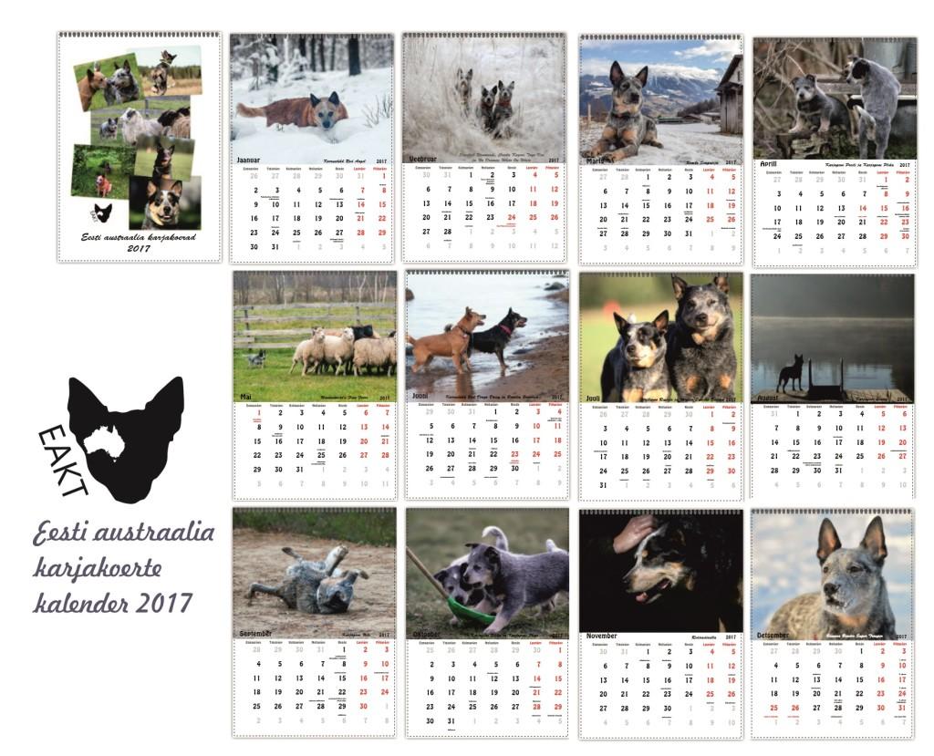 eakt-kalender-2017
